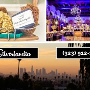 Look for the Best Bars in Silverlandia Here
