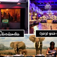 What Makes the Best Bars in Silver Lake